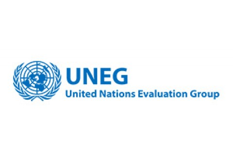 United Nations Evaluation Group – UNEG